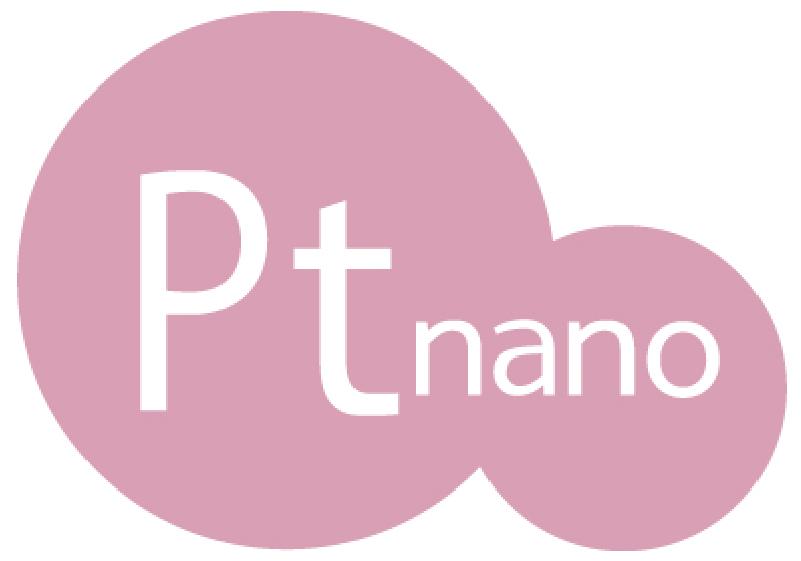 Pt nano ロゴ